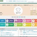 b-mobile(おかわり高速定額)格安SIM料金やおすすめ・注意点等